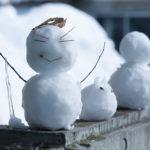 雪だるまの由来・起源ってなに?3分で超簡単に説明