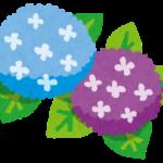 【あじさい】の種類や花言葉、名所を3分で紹介!日本原産て知ってた?