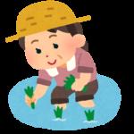 【衝撃】田植えの歴史とは?3分で超簡単に説明!時期には「アレ」が!?